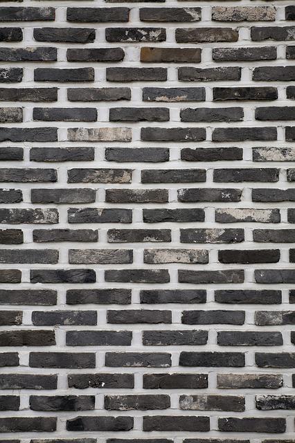 zid pesajo